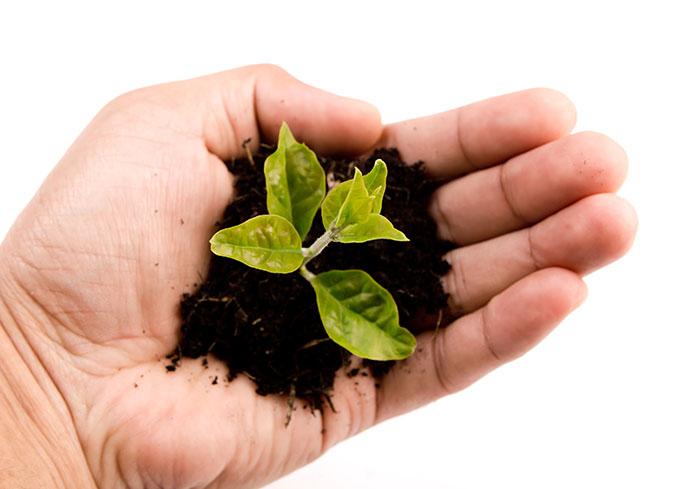 Fortbildung Sachkunde Pflanzenschutz