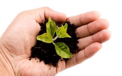 Pflanzenbautag